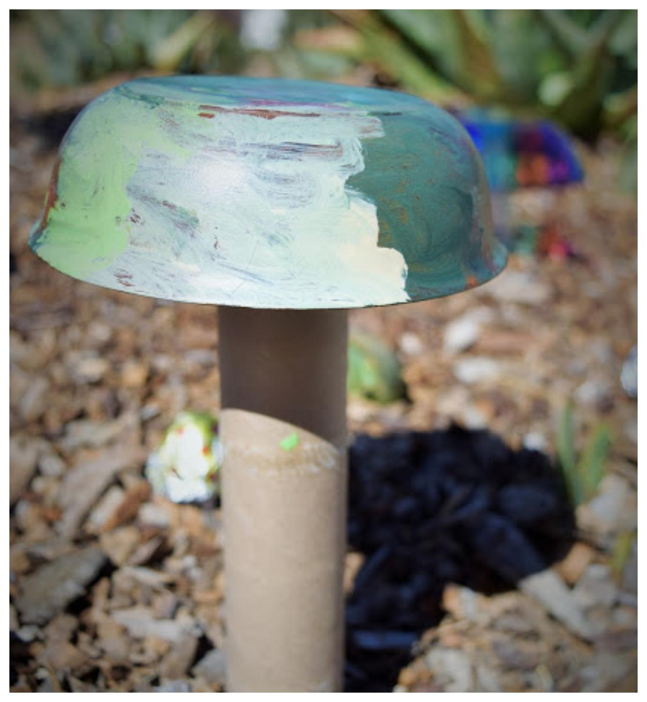 mushroom16