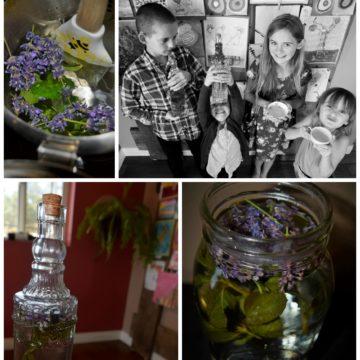 Grown Healthy: Lavender