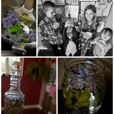 Grown Healthy: Lavender