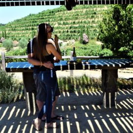 Taste of Sonoma Valley